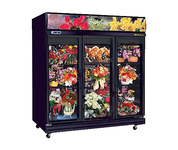 FLOWER DISPLAY CABINET